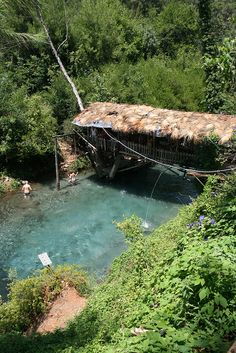 natural swimming pool . with swing and covered deck area suspended over pool