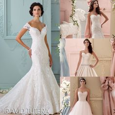 Taffeta lace or Tulle? What type of #bride are you? David Tutera @ Elegant Bridal Boutique Auburn Alabama! #davidtutera #bridetobe #elegantbridalau #bridal #sale