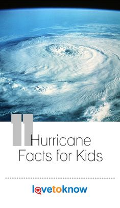 Hurricanes are powerful storms that start in warm ocean waters. While hurricanes are natural disasters known to leave people homeless and cause a lot of damage, there are other interesting facts about these unique severe storms. Weather Activities, Science Activities, Preschool Weather, Science Projects, Educational Activities, Science Experiments, Bad Storms, Severe Storms, Hurricanes For Kids