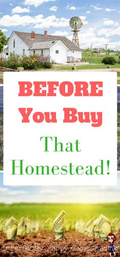 Before You Buy that Homestead - what you need to consider before jumping in.