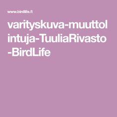 varityskuva-muuttolintuja-TuuliaRivasto-BirdLife Tieto, Content