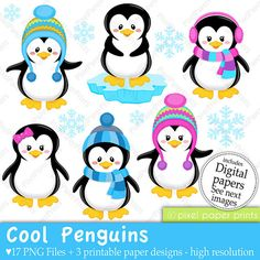Cool Penguins - Clip art and Digital paper set - Penguin clipart
