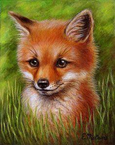 Fox Pictures, Cute Animal Pictures, Cute Animal Drawings, Cute Drawings, Fox Drawing, Fox Painting, Dibujos Cute, Fox Art, Cute Fox