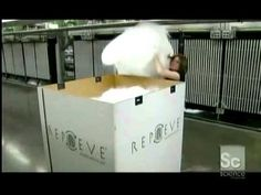 """Discovery / Science Channel's """"How It's Made"""" Recycled Polyester Yarn episode"""