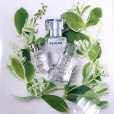 """HABA Squalane represents HABA's """"non-additive"""" philosophy.   It is a dry and smooth beauty oil that is gentle to skin."""