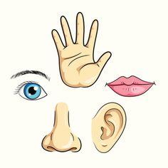 nose cartoon - Google Search