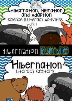 Literacy and Science centers, activities and crafts for Kindergarten Rocks, Preschool Math, Science Classroom, Literacy Stations, Literacy Centers, Science Centers, Animals That Hibernate, 1st Grade Science, Drama