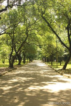 Ibirapuera Park in Sao Paulo, Brazil. I feel like walking in that path Beauty Around The World, Places Around The World, Around The Worlds, Brazil Travel, South America Travel, Countries Of The World, Beautiful Landscapes, The Good Place, Places To Visit