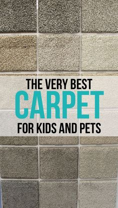 The Craft Patch Very Best Carpet For Kids And Pets