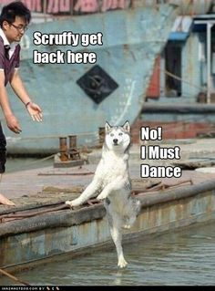 No I must dance!