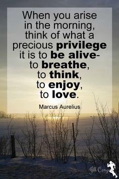 The Test of a Grateful Heart jillconyers.com #believe #gratitude