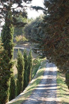 Barberino di Mugello - Tuscany