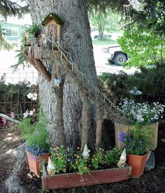 Cool stairs to a door on a tree