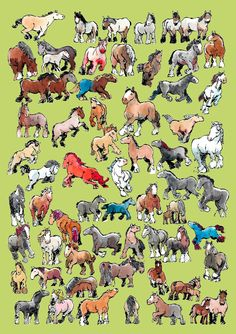 66 Draft Horses Jan Willem Middag Draft Horses