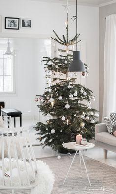 Christmas tree Christmas Holidays, Christmas Tree, Holiday Decor, Your Cards, Ornaments, Home Decor, Christmas Vacation, Teal Christmas Tree, Decoration Home