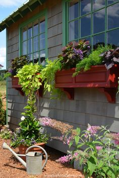 Window boxes planted with an assortment of sun loving and heat tolerant annuals  | homeiswheretheboatis.net  #pottingshed