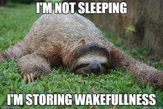Mistborn: storing wakefulness