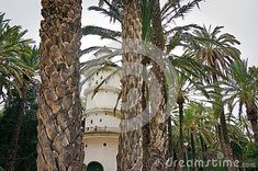A doves house tower in a middle of the palmeral park in Elche, Spain