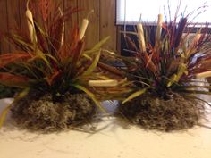 Cattail arrangements for duck dynasty shower