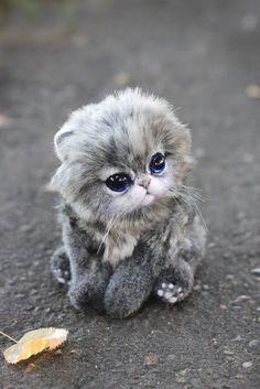Irentoys: котенок
