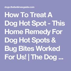 How To Treat A Dog Hot Spot - This Home Remedy For Dog Hot Spots & Bug Bites Worked For Us! | The Dog Guide