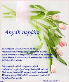 anyák napja - Google keresés Love Me Quotes, Science And Nature, Preschool Activities, Thoughts, Education, Mom, My Love, Google, Happiness