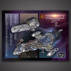 Ever Sail in a Firefly? This is Serenity, and she's the smoothest ride from here to Boros. A Firefly-class transport of some experience, both legal and otherwise. A home to her crew and passengers, th