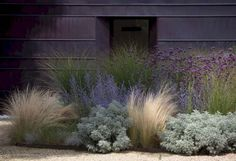 Low maintenance front yard landscaping ideas (8)