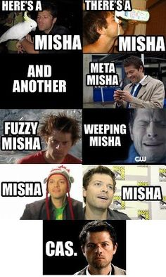 Misha vs Cas... I admit it... I totally sang this to the Here's a Llama song from albinoblacksheep.com...