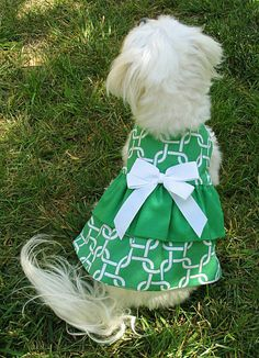 Hey, I found this really awesome Etsy listing at https://www.etsy.com/listing/231390091/reversible-ruffled-green-dog-dress-with
