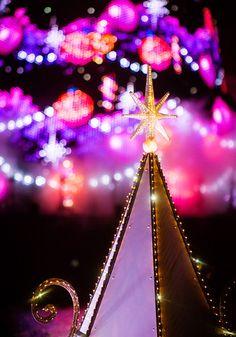 A look at Tokyo DisneySea and it's incredible Christmas trees!