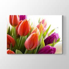 Resultado de imagen para kırmızı çiçek yağlı boya resimleri