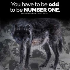 The 24 Best Wolf Quotes Motivational Wolf Quote Images Wolves
