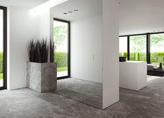 Großer Spiegel im Eingangsbereich mit Pflanztopf