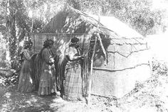 Chippewa women weaving mat in shade of bark house, 1900 Native American Pictures, Native American Quotes, Native American Tribes, Native American History, American Symbols, American Pride, Native Indian, Native Art, Indian Art