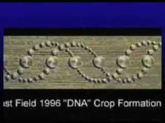 2012 NEW CROP CIRCLE SHOWS A DNA CHANGE IN THE CROP CIRCLES.
