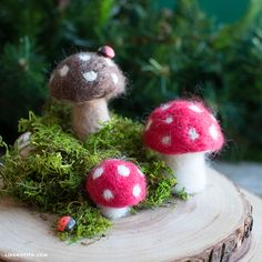 Make your very own tiny felted toadstools with our step-by-step tutorial. Small, simple, and straightforward -- make shroom for some felting in your life!