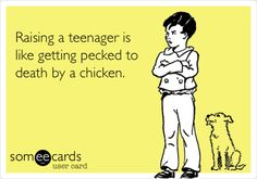 Raising a teenager is like getting pecked to death by a chicken.