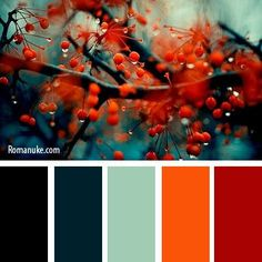 Color psychology meaning of Color Schemes Colour Palettes, Colour Pallette, Color Trends, Color Combos, Orange Color Schemes, Color Harmony, Color Balance, Color Psychology, Psychology Meaning
