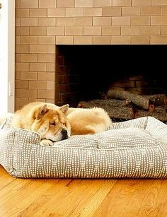 Give your pet a comfortable place to call your own without sacrificing your home's style with the Lounge Pet Bed; available in seven decorative designs.