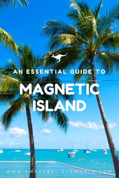 An Essential Travel Guide To Magnetic Island - Top Trends Little Island, Australia Travel, Travel Essentials, Travel With Kids, Where To Go, Travel Guides, Magnets, Things To Do, National Parks