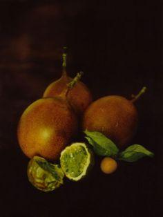 Liliroze - Vanités  Muted yet luminous yet moody.  Seasonal produce.