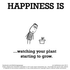 Image of: Make 1384 What Makes You Happy Let Us Know Here Lastlemoncom Pinterest 108 Best My Happiness Images Being Happy Quotes Luck Quotes