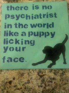 Cute dog quote on canvas for all the dog lovers!