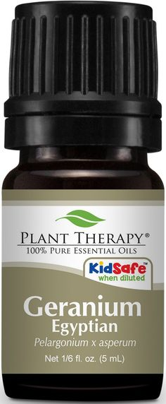 Plant Therapy Coffee Essential Oil Pure, Undiluted, Natural Aromatherapy, Therapeutic Grade 10 mL oz) Antibacterial Essential Oils, Copaiba Essential Oil, Thyme Essential Oil, Essential Oils For Pain, Organic Essential Oils, Essential Oil Blends, Copaiba Oil, Organic Oils, Frankincense Benefits