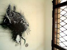 French graffiti artist Christian Guémy aka C215. http://www.homedsgn.com/2012/04/05/street-art-by-french-artist-c215/