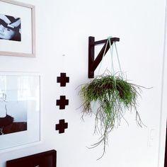 krukv xt ampel diy v ggprydnad blommor blomampel amplar interior design pinterest amplar. Black Bedroom Furniture Sets. Home Design Ideas