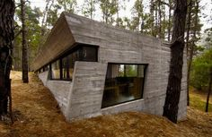 25 Beautiful Houses Found In Forests