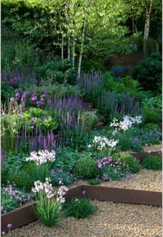 Lovely planting with tall purples, blues and pink/white