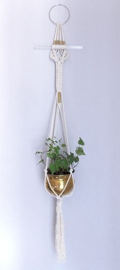 HIMO ART for Urban Outfitters Plant Hangers Collection :#16: